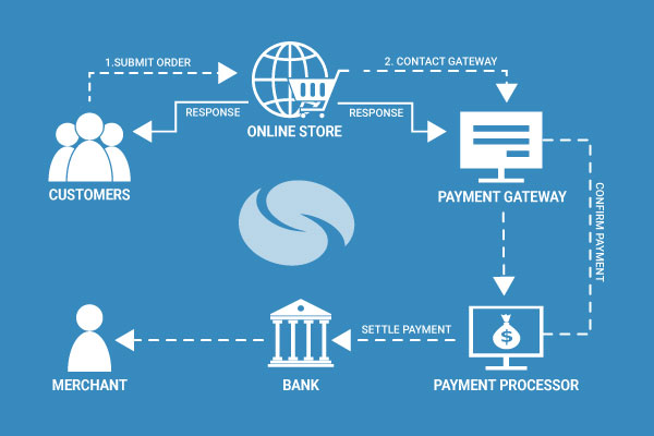how payment gateway works pdf